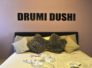 drumidushi